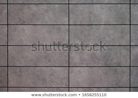 gray ceramic tile  Stock photo © OleksandrO