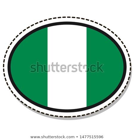 Nijerya bayrak oval düğme gümüş yalıtılmış Stok fotoğraf © Bigalbaloo