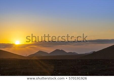 romantic sunrise on volcanic soil in La Geria Stock photo © meinzahn