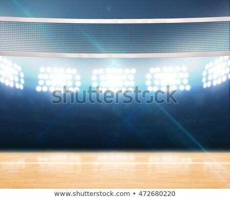 volleybal · grond · schaduw · reflectie · geïsoleerd · sport - stockfoto © albund