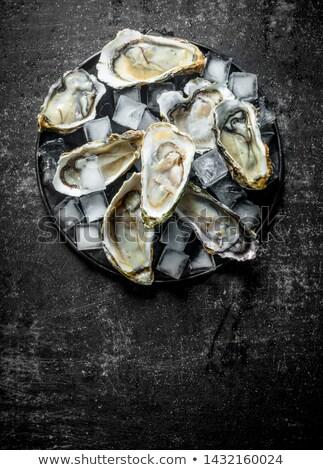 oester · Ice · Cube · citroen · vers · luxe - stockfoto © m-studio