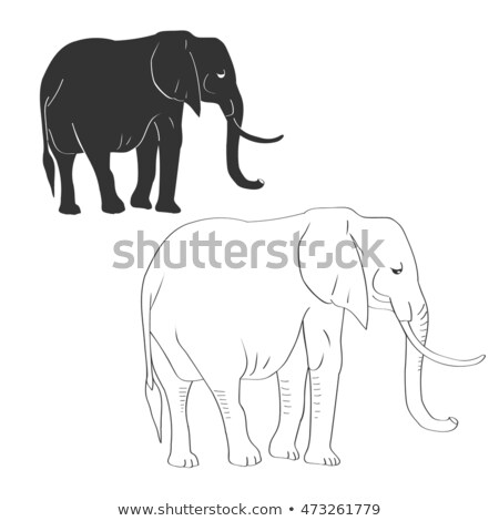 Elephant coloring book. Big Animal of jungle with long trunk. Af Stock photo © popaukropa