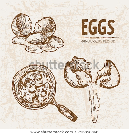 digital vector detailed line art cooking eggs stock photo © frimufilms