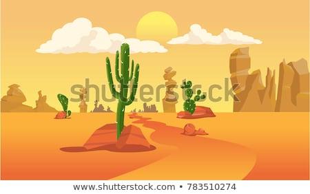 Cena camelo pôr do sol ilustração sol fundo Foto stock © bluering