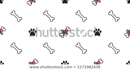 Osso de cão fita arco isolado branco comida Foto stock © hittoon