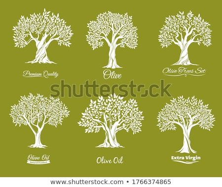 cracked wood tree vector logo icon stock photo © blaskorizov