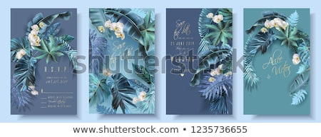 beautiful purple orchid flowers and tropical monstera leaves bac stock photo © margolana