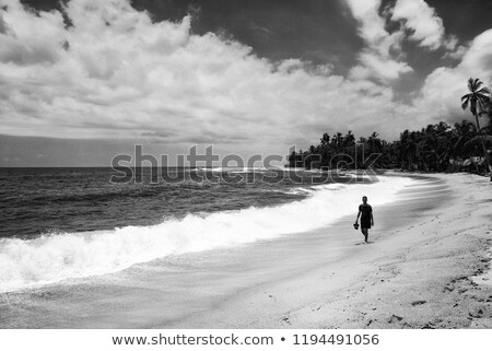 Beautiful wild caribbean beach landscape at Tayrona, Colombia Stock photo © boggy