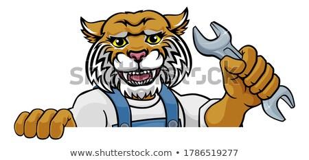 Vadmacska vízvezetékszerelő szerelő tart csavarkulcs rajzolt állat Stock fotó © Krisdog