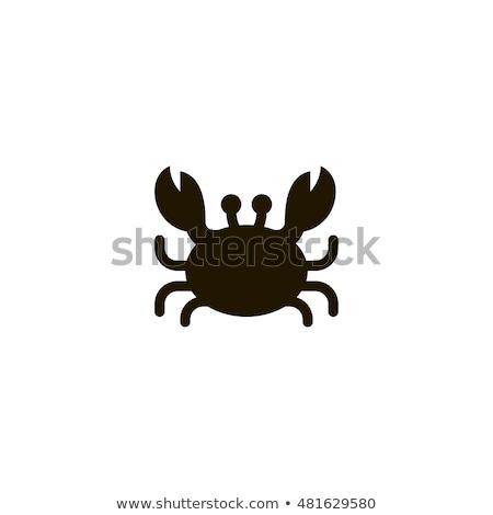 Caranguejo vetor ícone ilustração modelo de design abstrato Foto stock © Ggs