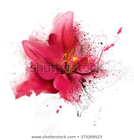 Interior of white lily flower Stock photo © Ansonstock