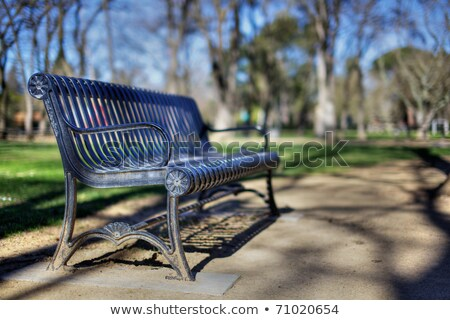 magányos · fa · üres · pad · magány · magány - stock fotó © bobkeenan