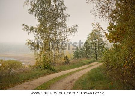 Nyugalom fölött őszi folyó csend kicsi Stock fotó © lypnyk2