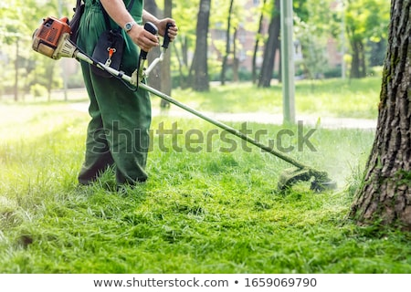 Lawnmower With Grass Stock photo © adamson