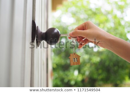 dream of homeownership stock photo © designsstock
