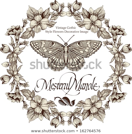 floral frame with butterfly  Stock photo © Ghenadie