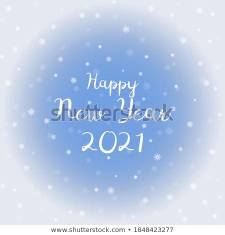 Snowflake crystals on blue background vector illustration.  stock photo © lenapix