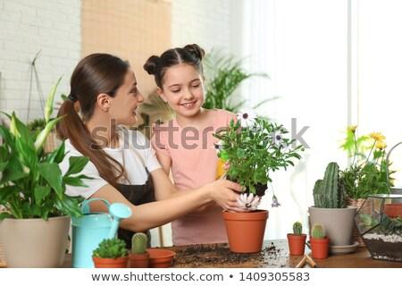 Lány gondoskodó növény gyerekek gyermek kommunikáció Stock fotó © photography33