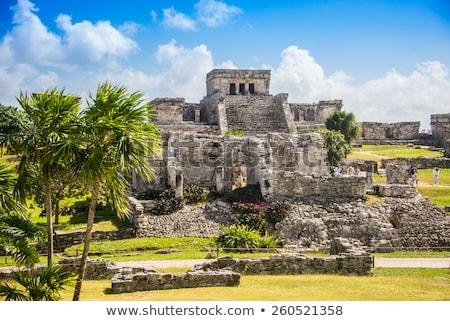археологический · Мексика · город · деревья · лет - Сток-фото © sumners