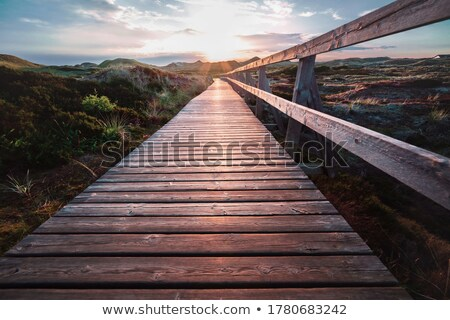 Stock photo: Wooden walkway through the dunes
