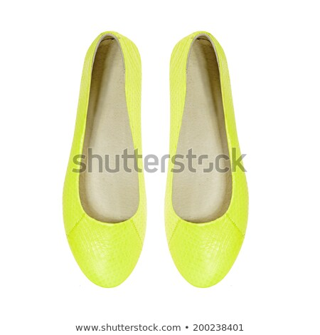 snake leather women shoe isolated on white stock photo © gsermek