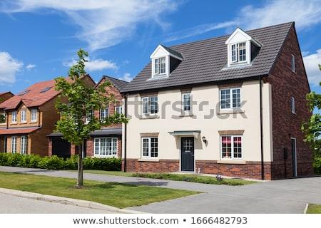Town houses Stock photo © trgowanlock