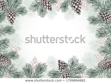 keret · fenyőfa · fák · ág · karácsony · fa - stock fotó © Alegria111