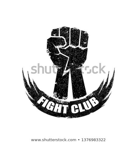 Vegyes harcművészet ikon embléma kék piros Stock fotó © Porteador