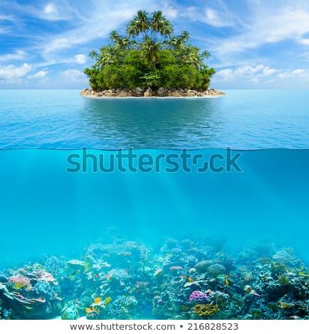 Beautiful uninhabited island Stock photo © Anna_Om