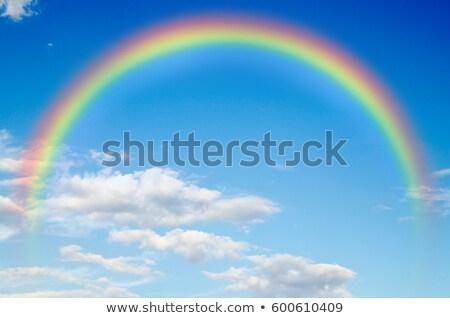 Nublado céu rainbows árvore paisagem Foto stock © mahout