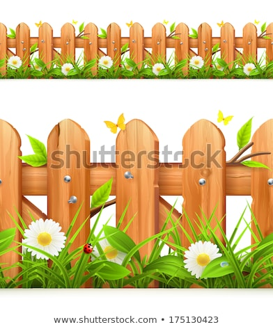 chamomile flowers on a background of wooden fence stock photo © yelenayemchuk