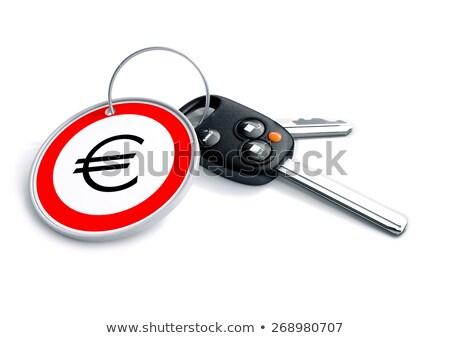 slusszkulcs · Euro · valuta · szimbólum · szett · európai - stock fotó © crashtackle