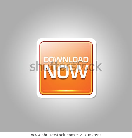 Download Now Glossy Shiny Circular Vector Button stock photo © rizwanali3d
