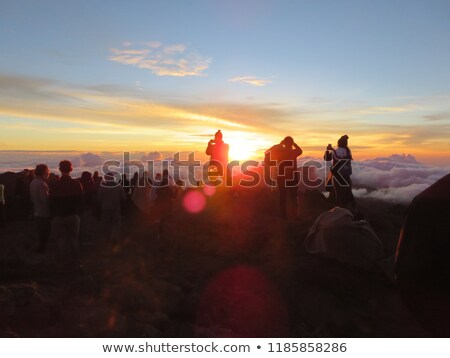 Sunrise in Haleakala, Maui. Stock photo © iofoto