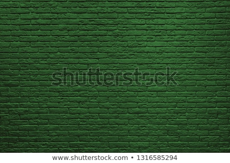 A green stonewall Stock photo © bluering