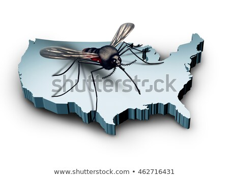 Virus Verenigde Staten mug vergadering 3d illustration land Stockfoto © Lightsource