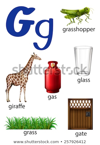 Things that start with the letter G Stock photo © bluering