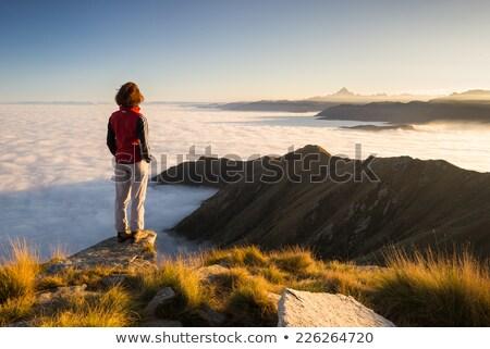 Bakıyor dışarı uzak vadi merkezi Kostarika Stok fotoğraf © wildnerdpix