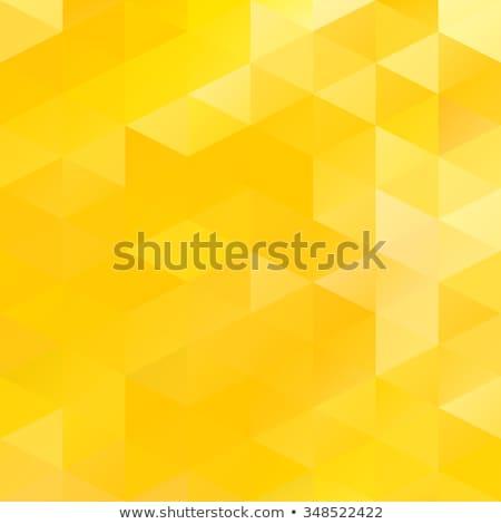 Citromsárga háromszög tányér kicsi nagyszerű előételek Stock fotó © Digifoodstock