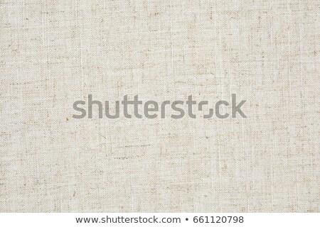 Vintage Fabric Background Stock photo © kostins