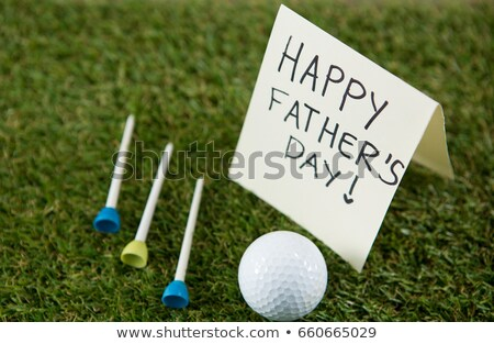 close up of fathers day gift with golf ball and tee on field stock photo © wavebreak_media