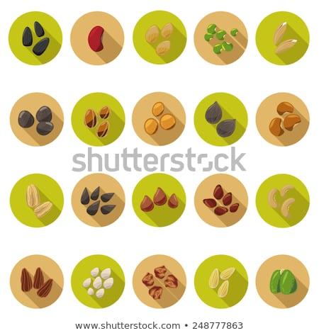 Búza magok ikon stílus grafikus szürke Stock fotó © ahasoft