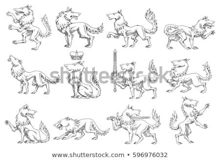 собаки пальто оружия гребень щит собака Сток-фото © Krisdog