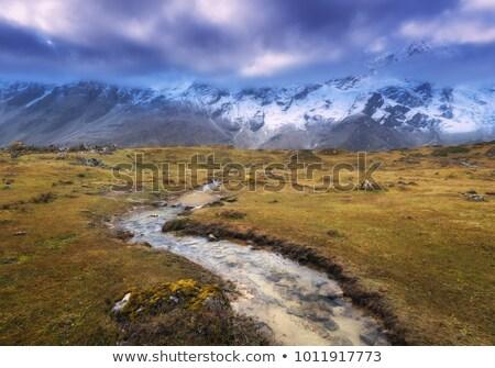 Bergen sneeuw gedekt klein rivier Geel Stockfoto © denbelitsky