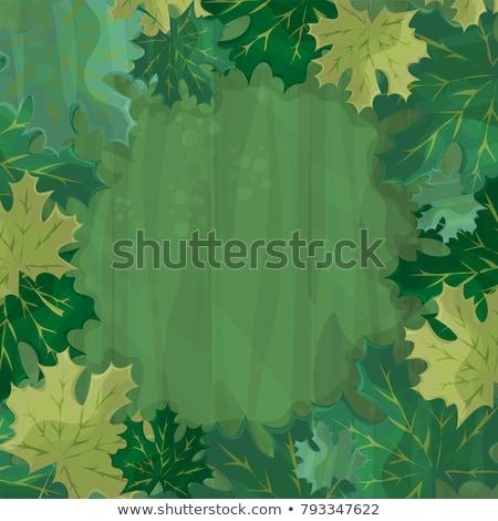 Frame testo decorazione foresta verde foglia d'acero Foto d'archivio © Natali_Brill