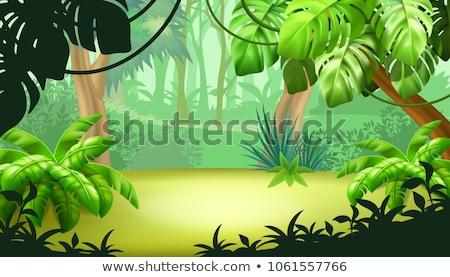 ゲーム テンプレート ジャングル シーン 実例 赤ちゃん ストックフォト © bluering