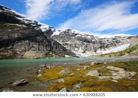 Gleccser park Norvégia fák hegyek ősz Stock fotó © phbcz