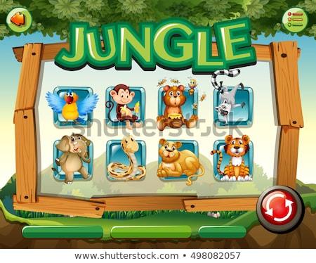 Foto stock: Jogo · modelo · macacos · floresta · ilustração · papel