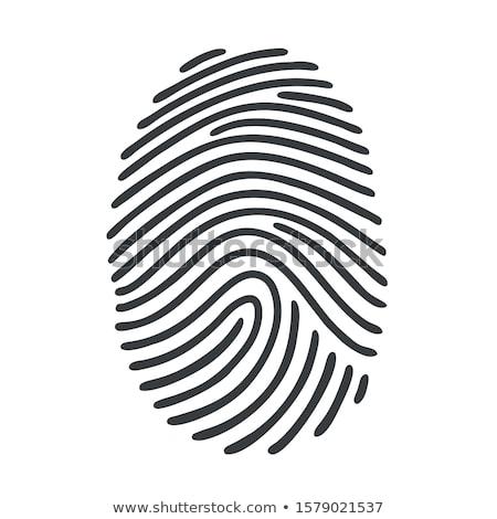 Identificação impressão digital cartaz vetor processo Foto stock © robuart