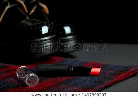Otono elegante rojo a rayas abrigo negro Foto stock © Illia